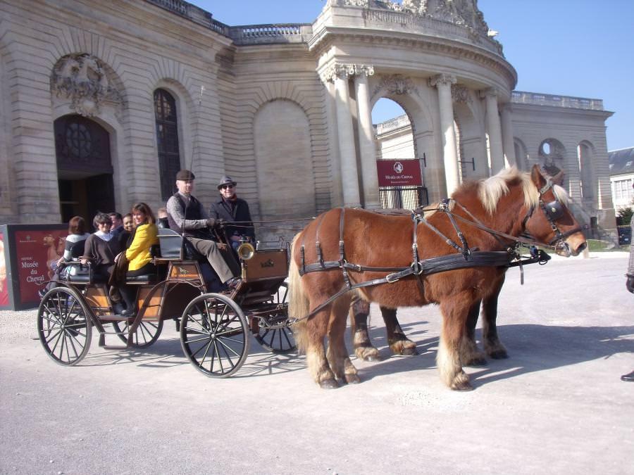 promenades en calèche d'époque pour un voyage insolite dans l'Oise