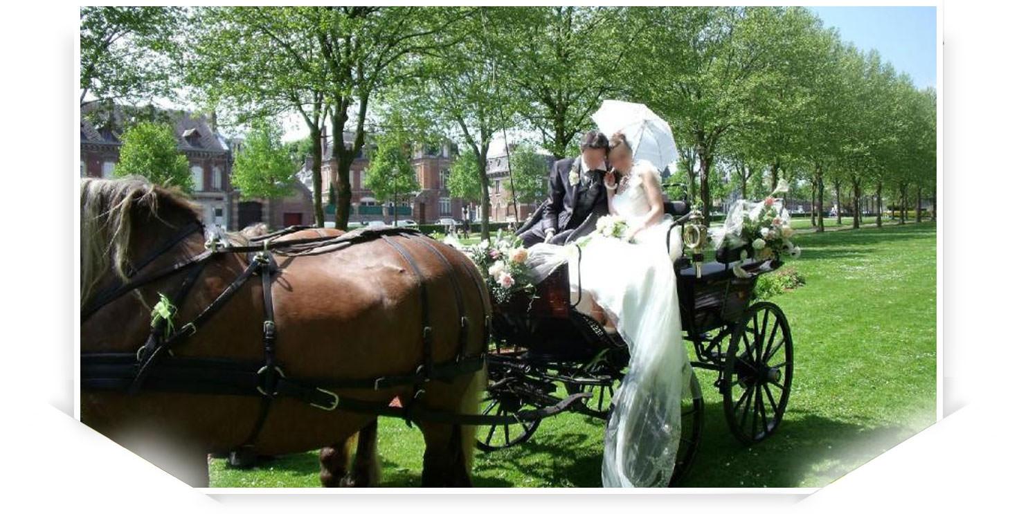 Beauvais, de magnifiques chevaux et un attelage raffiné à votre service